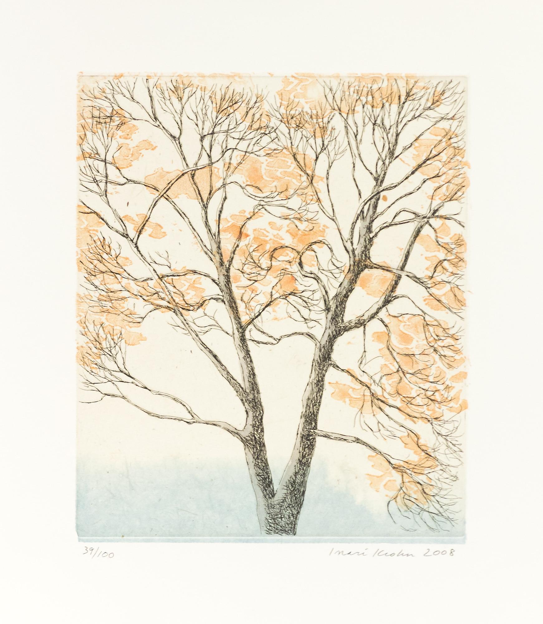 Inari_Krohn_puu_syksyllä